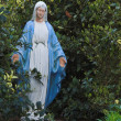 Stock Photo: Virgin Mary Statue