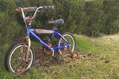 生锈的自行车 — 图库照片