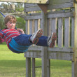 Royalty-Free Stock Photo: Boy on a Swing