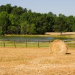 Hay Bale — Stock Photo #1702287
