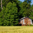 Stock Photo: Tobacco Barn