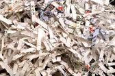 Shredded Paper — Stock Photo