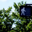 walk signal — Stock Photo