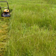 Stock Photo: Mowing Lawn