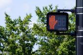 Don't Walk Signal — Stock Photo