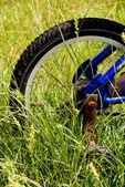 Bicycle Tire — Stock Photo