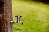 Spigot — Stock Photo