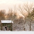 Tobacco Barn in Snow - Stock Photo