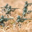 Army Man - Stockfoto