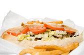 费城奶酪牛排和法式炸薯条 — 图库照片