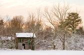 Tytoniu stodoła w śniegu — Zdjęcie stockowe