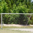 Royalty-Free Stock Photo: Soccer Goal