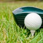 Golfing — Stock Photo #2013895