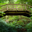 Wooden Footbridge — Stock Photo #2014579