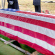 Stock Photo: Flag Draped Coffin