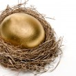 Golden Egg - Foto de Stock