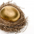 Golden Egg - Stockfoto