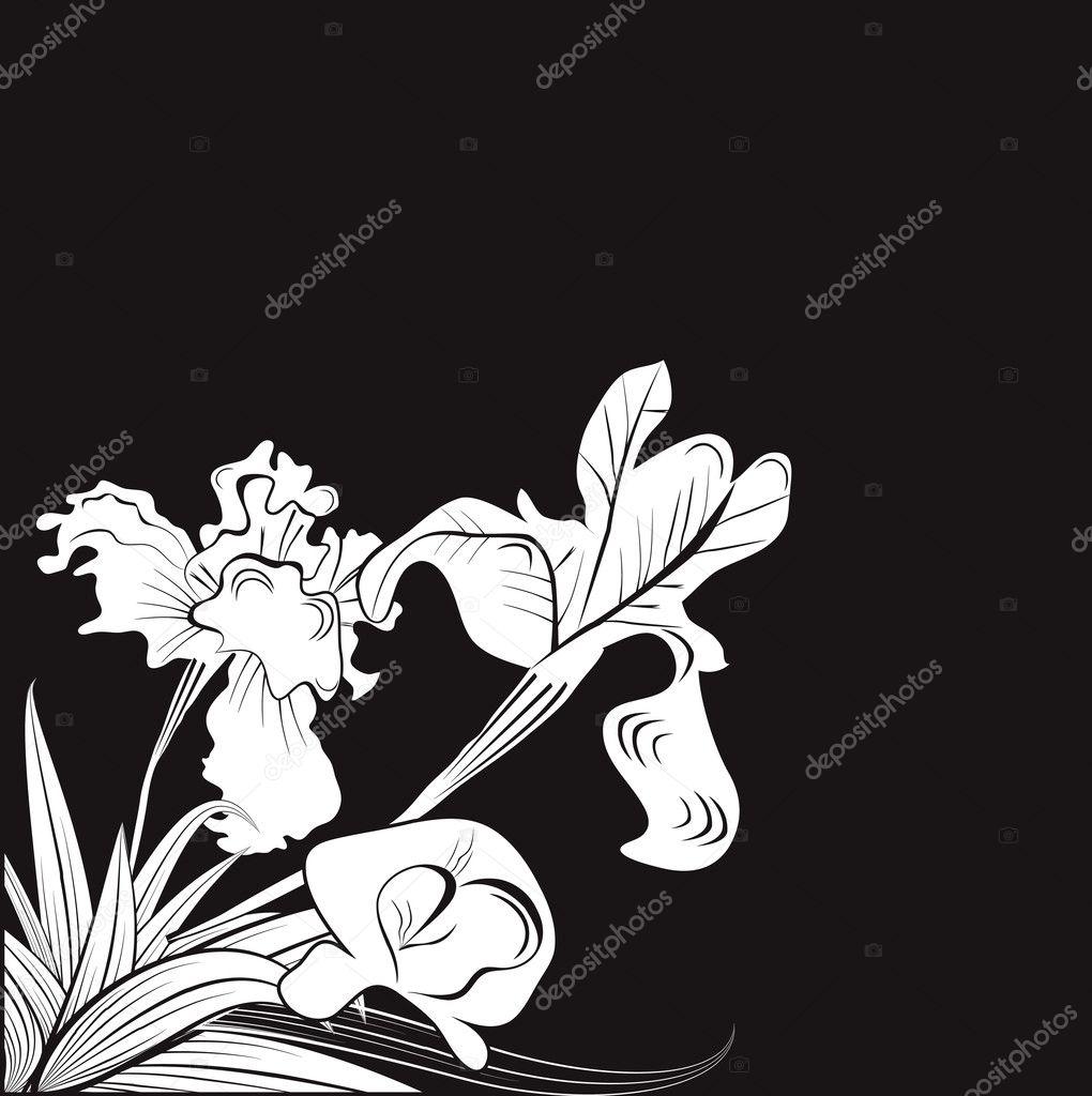 Черно белая открытка с цветами