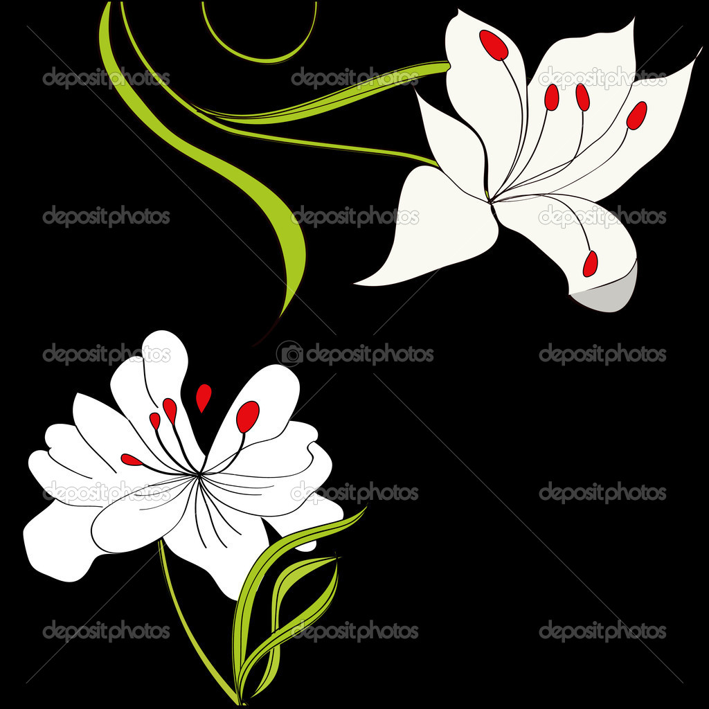 Black background with white flowers — Stock Vector #2581793