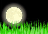Grass under the moon — Stock Vector
