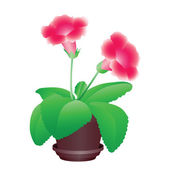 Flower in a pot — Stock Vector