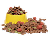 Petfood bowl — Stock Photo