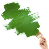 Painting with green brush — Stock Photo