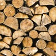 Firewood — Stock Photo #1772937