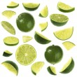 Sliced lime collection — Stock Photo #1773077