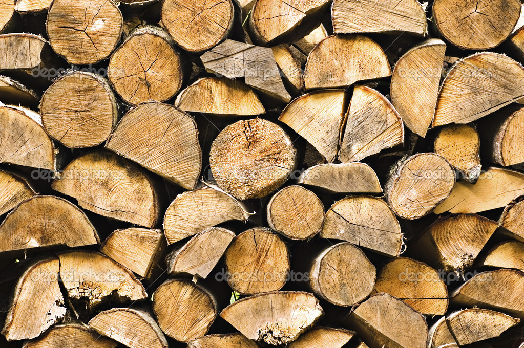 Firewood texture — Stock Photo #1772937