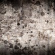 Stock Photo: Old concrete wall