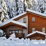 Winter beautiful scene — Stock Photo