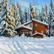 Stock Photo: Winter beautiful scene