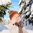 Stok fotoğraf: Winter happiness