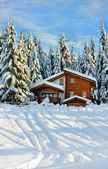 Winter beautiful scene — Stock Photo