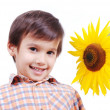Very cute boy hugging sunflower as frie — Stock Photo
