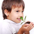 Child holding and smelling a plant — Stock Photo #1832781