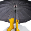 Preparing for winter and fall, umbrella and boot - Stock Photo