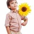 Stock Photo: Very cute boy hugging sunflower as frien