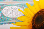 Rose flower put on holy Islam book Koran — Stock Photo