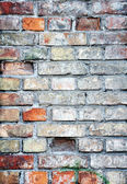 Brick wall, different colors, great back — Stock Photo