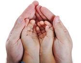 Mãos grandes e pequenas na isolada backgrou — Foto Stock