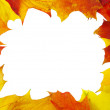 Frame made of autumn leaves — Stock Photo