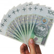 Banknotes as a fan in a hand isolated - Stock Photo
