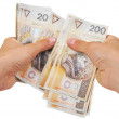 Hands counting money — Stock Photo #1630753