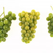 Grapes isolated on white background — ストック写真