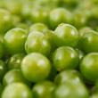 White grapes background — Stock Photo