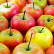 Apples, may be used as background — Stock Photo