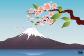Mountain Fuji — Stock Photo