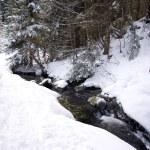 Allgau mountains winter — Stock Photo
